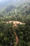 Hutan bekas tebangan