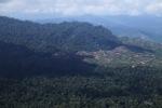 Deforestation for oil palm -- sabah_1220
