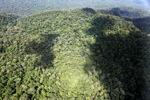 Ancient rainforest in Imbak Canyon, Sabah, Malaysia