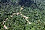 Logging road -- sabah_1552