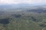 Oil palm plantation -- sabah_1632