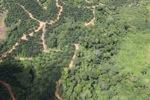 deforestation for oil palm -- sabah_1673