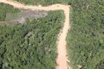 Logging road -- sabah_1682