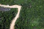 Jalan logging
