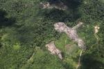 deforestation for oil palm -- sabah_1688