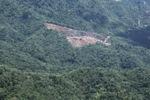 Deforestation in Borneo -- sabah_2019