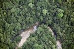 Malaysia Kalimantan hutan