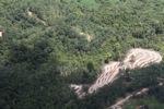 Deforestation in Borneo -- sabah_2106