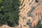 deforestation for oil palm -- sabah_2218