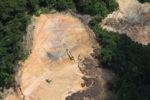 Deforestation in Borneo -- sabah_2267