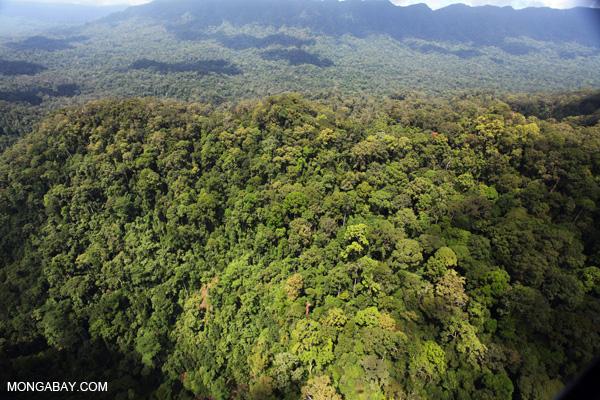 Imbak Canyon, Sabah.