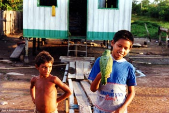 Kinder im Amazonas