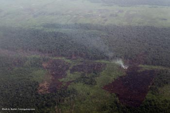 Burning peatland in Kalimantan