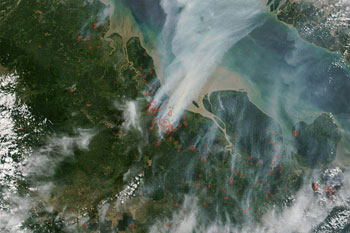 NASA satellite image showing fires burning in Sumatra
