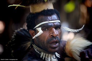 Dani warrior in Papua (Indonesian New Guinea)