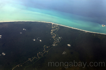 Aerial view dari sungai hutan hujan dataran rendah Winding mencapai pantai New Guinea