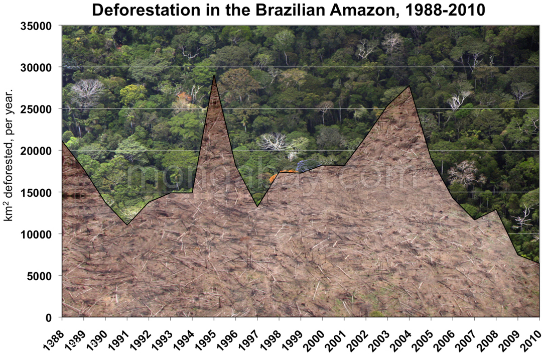 Jhrliche Abholzung im brasilianischen Amazonas. 