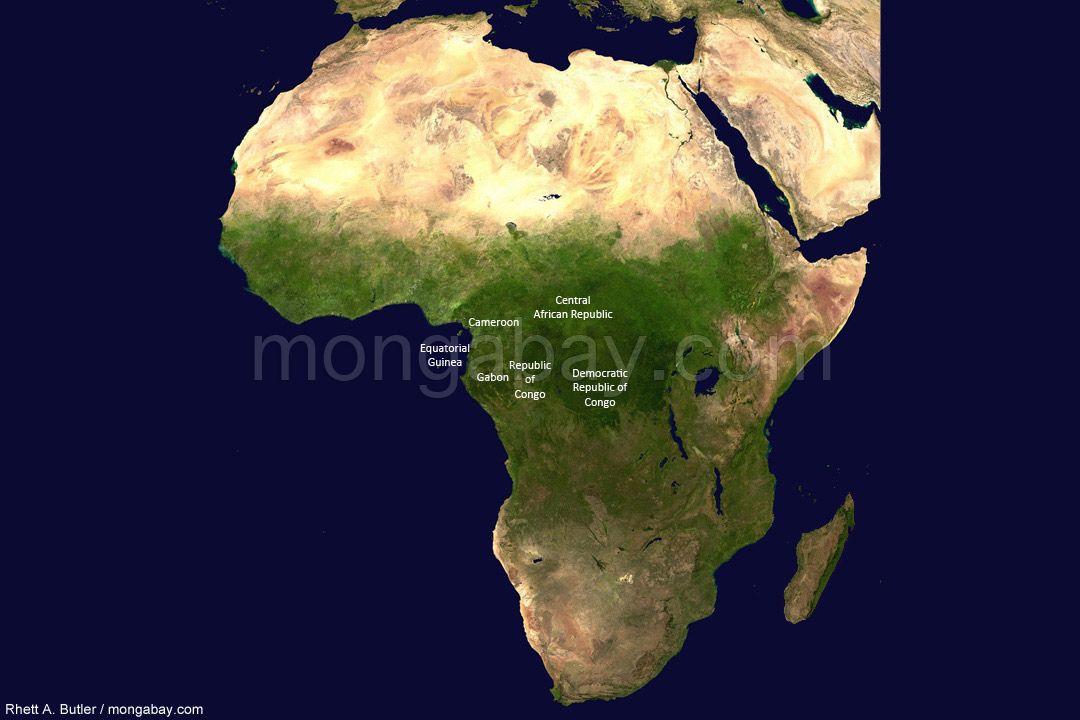 Satellite image: Congo basin countries