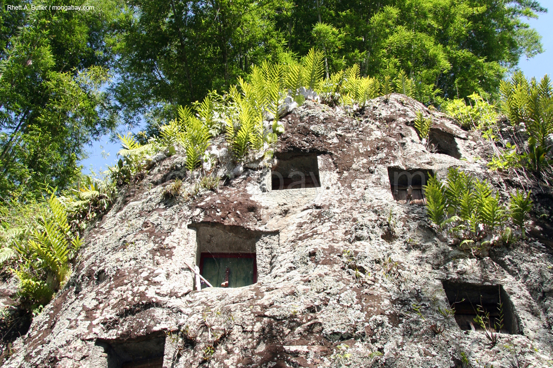 Tombs carved into a the face of a cliff