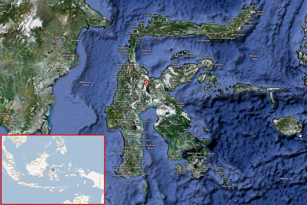 Satellite image of Sulawesi