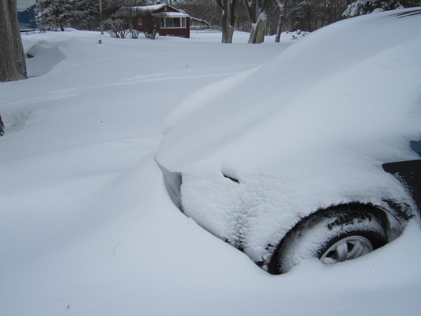 Blizzard feb 2 2011 (1)