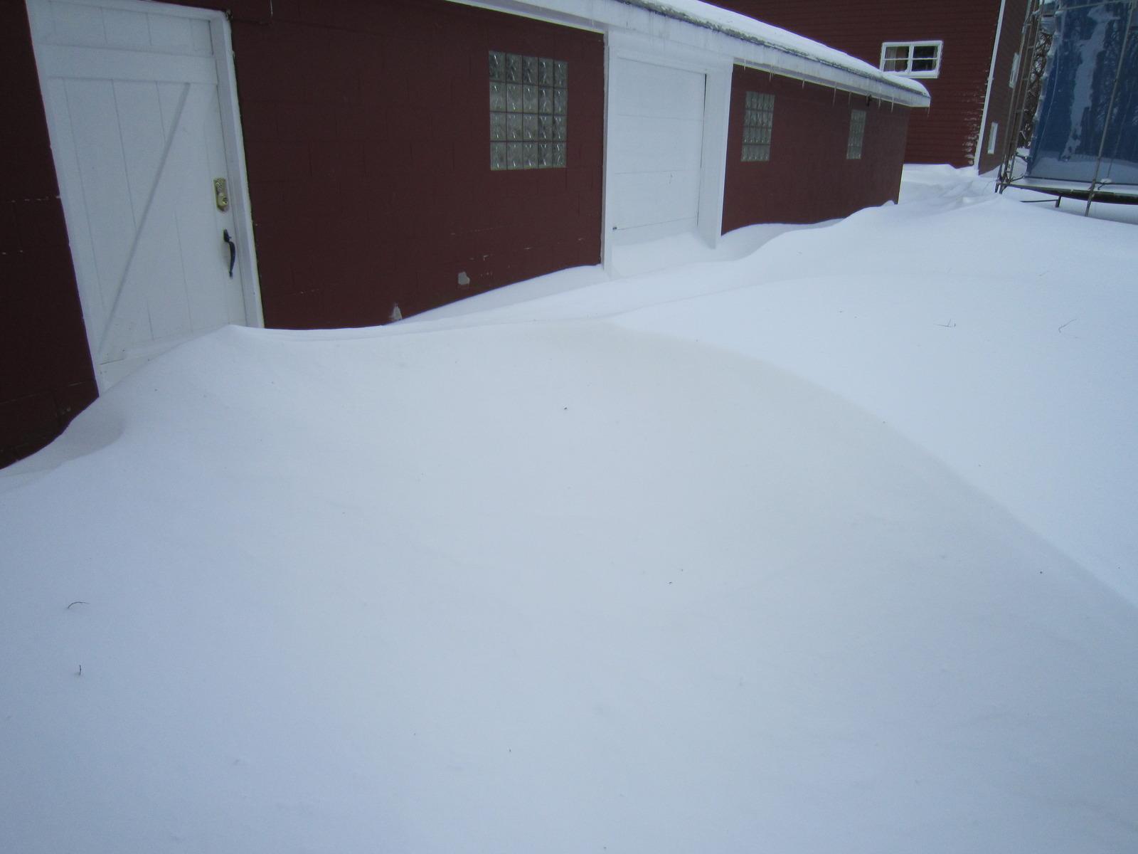 Blizzard feb 2 2011 (3)
