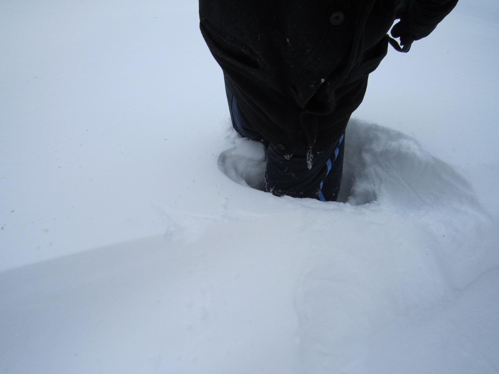 Blizzard feb 2 2011 (4)