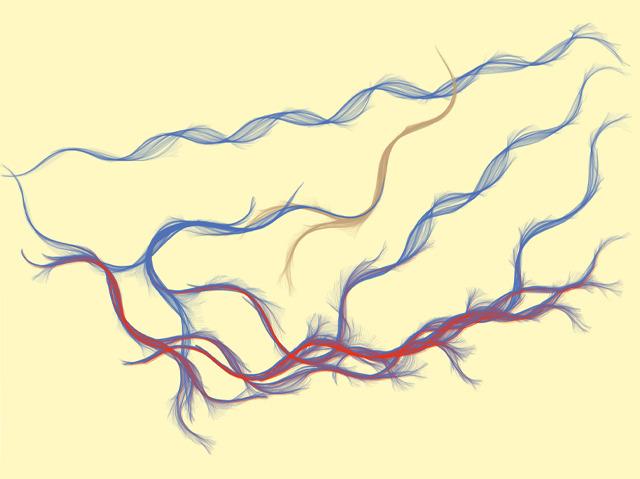 Worm Tracks