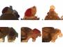 Headless Horseflies