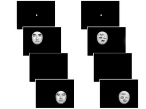 Placing Faces