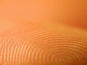 Fascinating Fingerprints