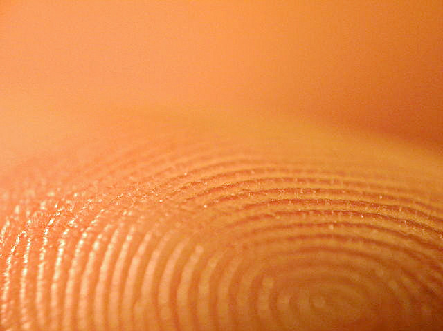 Fascinating Fingerprints