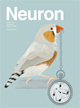 Published in Neuron, May 2016