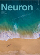 Published in Neuron, June 2017