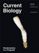 Published in Current Biology 103(8):1666–1671