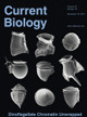 Published in Current Biology 22(24): 2294-2303