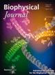 Published in Biophysical Journal, 104(5): 1118-1028