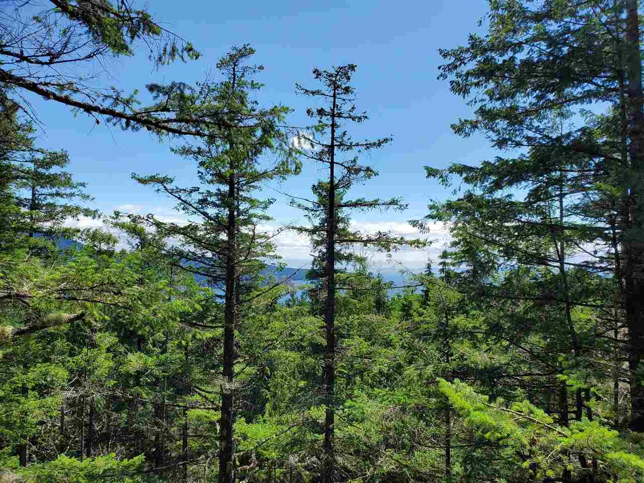 FEATURED LISTING: Lot 48 FLINT Road Keats Island