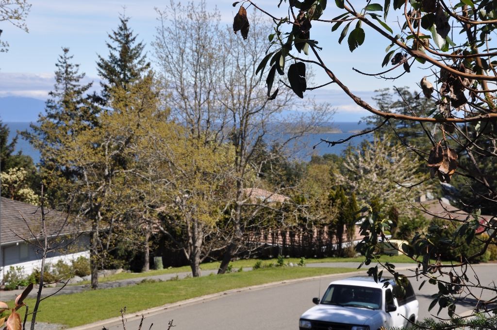 Main Photo: LT 25 HIGHLAND ROAD in NANOOSE BAY: Fairwinds Community Land Only for sale (Nanoose Bay)  : MLS® # 295648