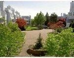 "Main Photo: 202 7751 MINORU Blvd in Richmond: Brighouse South Condo for sale in ""CANTERBURY COURT"" : MLS(r) # V644519"