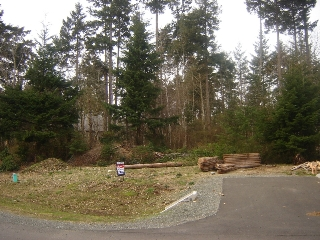 Main Photo: 605 COLBY ROAD in COMOX: Comox Valley Land Only for sale (Vancouver Island/Smaller Islands)  : MLS® # 231562
