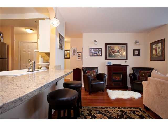 Photo 4: # 201 4990 MCGEER ST in Vancouver: Collingwood VE Condo for sale (Vancouver East)  : MLS(r) # V827027