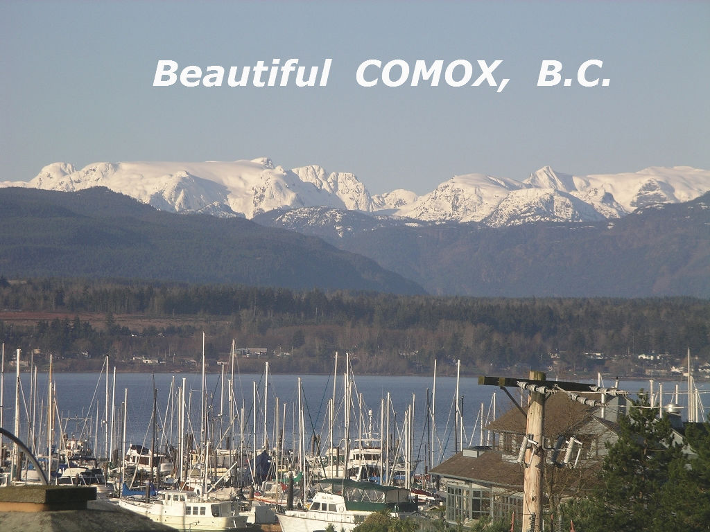 Main Photo: #308  1695 Comox Ave., in Comox: Condo for sale (FVREB Out of Town)  : MLS® # 284902