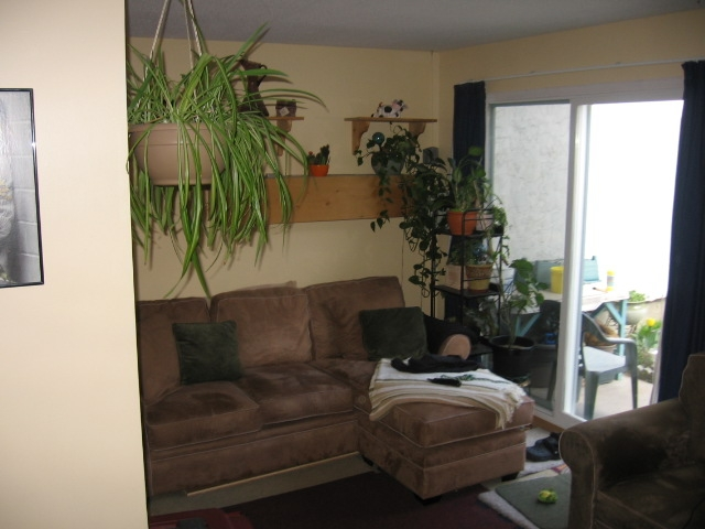 Photo 5: 80 GREEN AVE E in Penticton: Other for sale (23)  : MLS(r) # 108456