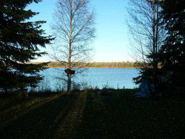 FEATURED LISTING: TWP RD 633 RGE RD 261A Rural Westlock County