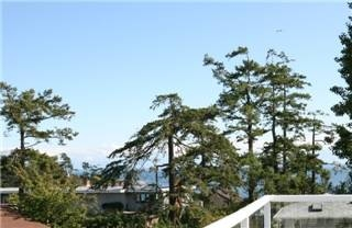 Photo 8: : Single Family Dwelling for sale (Esquimalt Esquimalt Victoria Vancouver Island/Smaller Islands British Columbia)  : MLS(r) # 252065