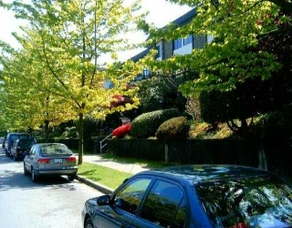 "Main Photo: 342 588 E 5TH AV in Vancouver: Mount Pleasant VE Condo for sale in ""MCGREGGOR"" (Vancouver East)  : MLS® # V534126"
