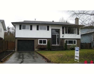 Main Photo: 4944 205A Street in Langley: Langley City House for sale : MLS® # F2829015