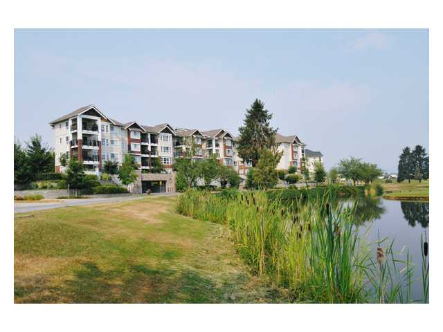 "Main Photo: 405 19677 MEADOW GARDENS Way in Pitt Meadows: North Meadows Condo for sale in ""THE FAIRWAYS"" : MLS® # V845374"