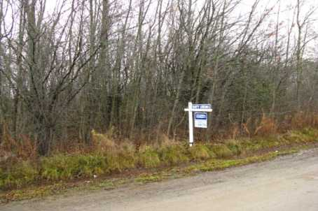 Main Photo: L11 Maple Beach Road in Beaverton: Freehold for sale (N24: BEAVERTON)  : MLS(r) # N1745968